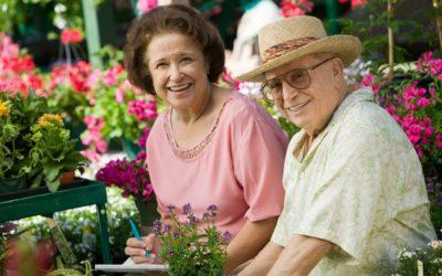 Les Cancers et leur impact chez les seniors de +75 ans