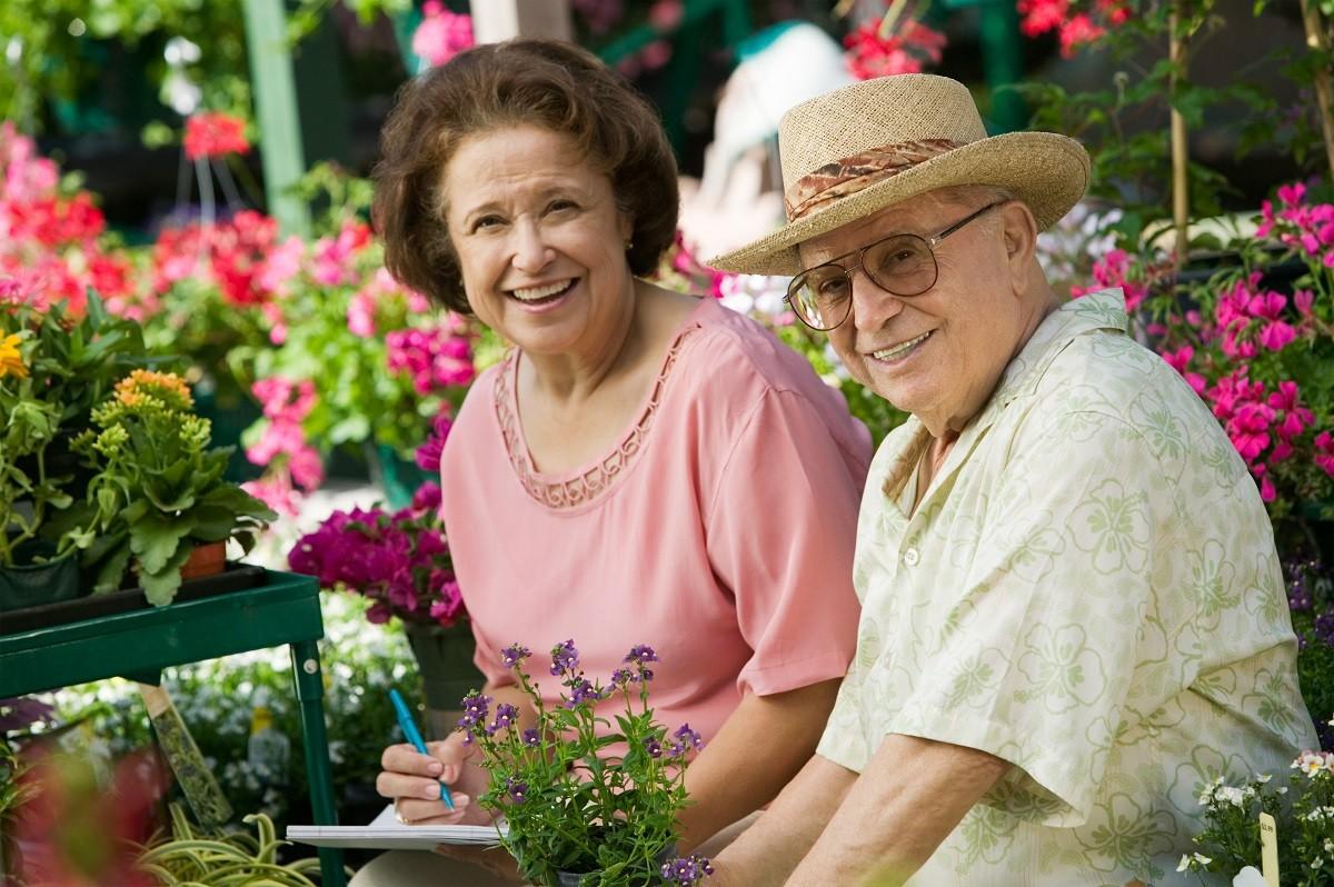 Cancer chez les plus de 75 ans